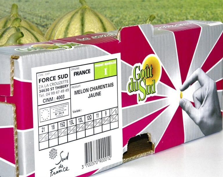 Melon Goût du sud