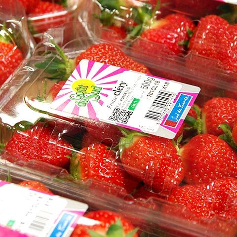 Clery fraise Goût du sud