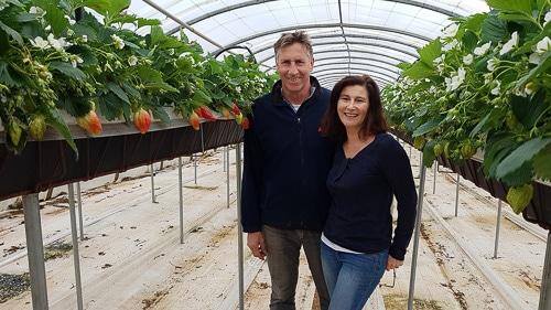 Producteur de fraise Cléry et Gariguette, melon et salade bio