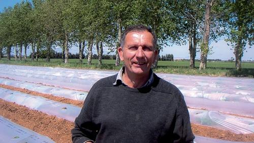 Olivier Cozon, producteur de salade, de melon charentais jaune et pastèque sans pépin