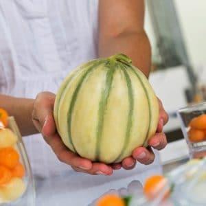 Melon Le Costelet® est un melon type Charentais